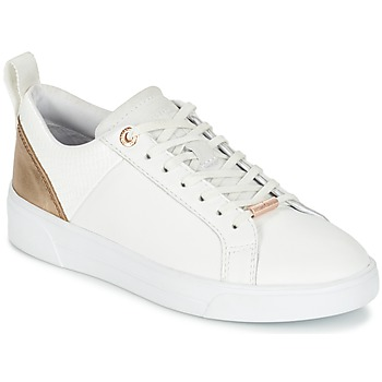 Ted Baker  KULEI  womens Shoes (Trainers) in white