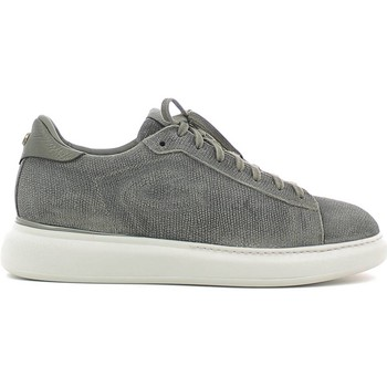 Shoes Men Low top trainers Alberto Guardiani SU73353C Sneakers Man Grey Grey