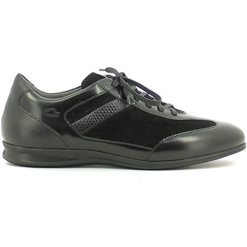 Shoes Men Low top trainers Alberto Guardiani SU73433F Sneakers Man Nero