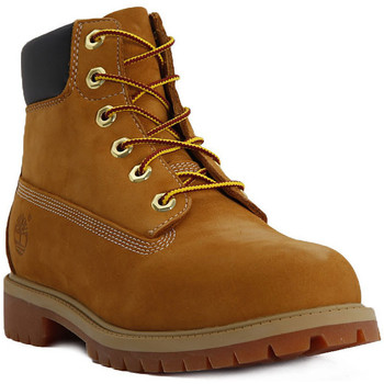 Shoes Women Ankle boots Timberland 6 INCH PREMIUM Giallo