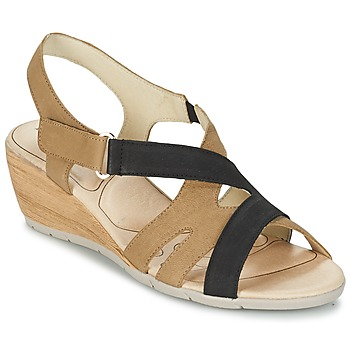 Shoes Women Sandals Rondinaud COLAGNE Black