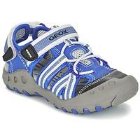 Shoes Boy Outdoor sandals Geox J SAND.KYLE C Blue / White