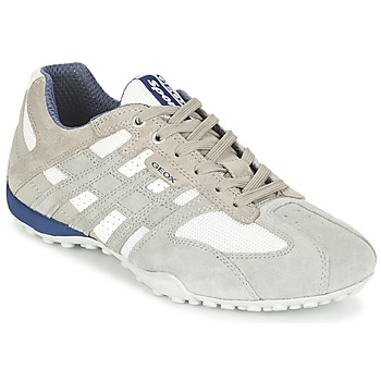 Shoes Men Low top trainers Geox SNAKE Ice / White