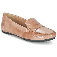 Shoes Women Loafers Geox D LEELYAN B TOFFEE
