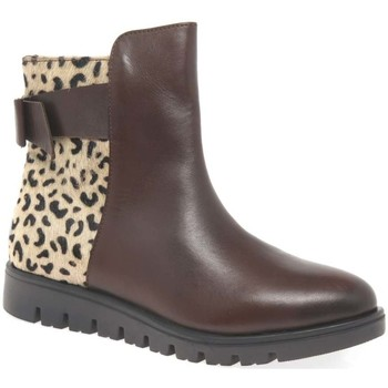 Shoes Girl Ankle boots Gioseppo Casona Girls Senior Ankle Boots brown
