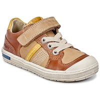 Shoes Boy Low top trainers Kickers IGORLOW Camel