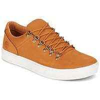 Shoes Men Low top trainers Timberland ADV 2.0 CUPSOLE ALPINE OX Wheat