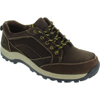 Shoes Men Low top trainers Cotswold nailsworth men's dark brown lace up Nubuck suede walking traine Brown