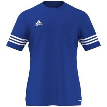 Clothing Men short-sleeved t-shirts adidas Originals Entrada 14 Blue