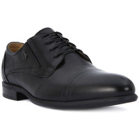 Shoes Men Derby Shoes Nero Giardini NERO GIARDINI CARACAS NERO Nero