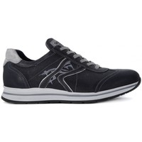 Shoes Men Low top trainers Nero Giardini NERO GIARDINI  NEOPOLIS BLU Blu