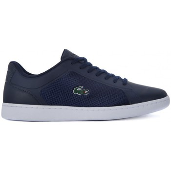 Shoes Men Low top trainers Tommy Hilfiger LACOSTE ENDLINER 116 Blu