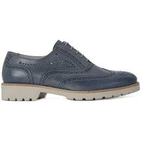 Shoes Women Brogues Nero Giardini NERO GIARDINI  DREAM NAVY Blu