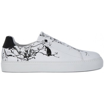 Shoes Women Low top trainers Frau GALAXY BIANCO  156,3