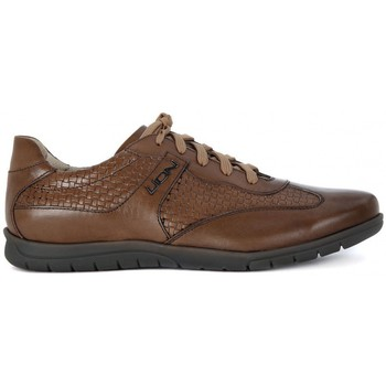 Shoes Men Low top trainers Lion ETRUSCO 311    131,3