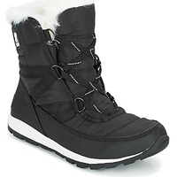 Shoes Women Mid boots Sorel WHITNEY SHORT LACE Black