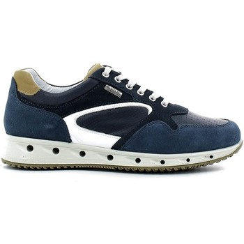Shoes Men Walking shoes Igi&co 7716 Sneakers Man Blue Blue