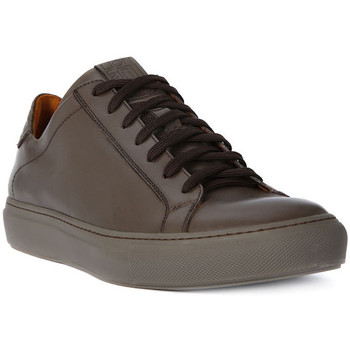 Shoes Men Low top trainers Lion WEST 311    155,8