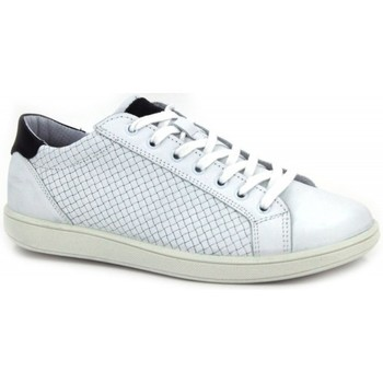 Shoes Men Shoes Igi&co 7676 white