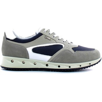 Shoes Men Walking shoes Igi&co 7716 Shoes with laces Man Grey Grey