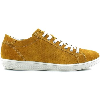 Shoes Men Walking shoes Igi&co 7676 Shoes with laces Man Yellow Yellow