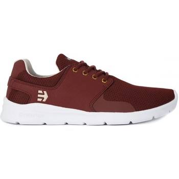 Shoes Men Low top trainers Etnies Scout XT
