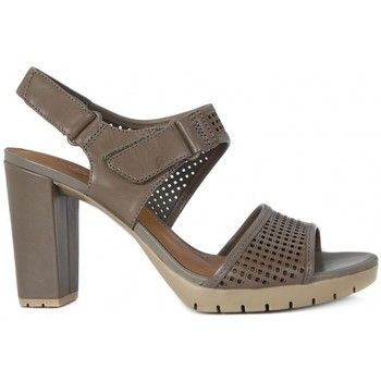 Shoes Women Sandals Clarks PASTINA ESTATE    140,6