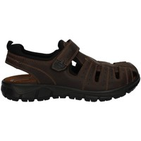 Shoes Men Sandals Igi&co 7732 Sandals Man Brown Brown