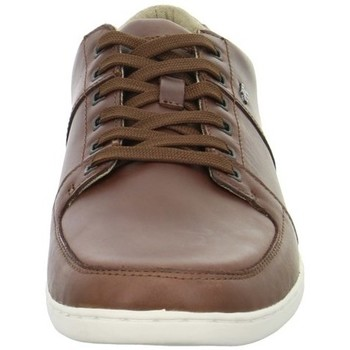 Shoes Men Low top trainers Boxfresh Spencer Icn Brown