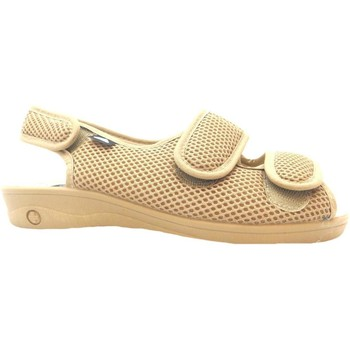 Shoes Women Sandals Celia Ruiz 213 Beige