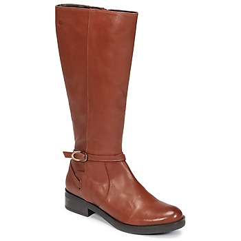 Shoes Women High boots Betty London HOVANI CAMEL