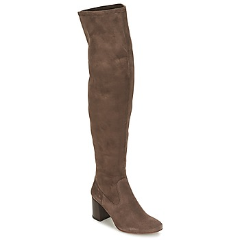 Shoes Women Thigh boots Betty London HERMA Taupe