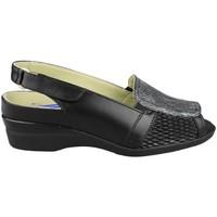 Shoes Women Sandals Dtorres ROCIO E1 BLACK