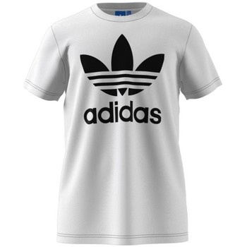 Clothing Men short-sleeved t-shirts adidas Originals Originals Trefoil White