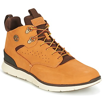 Shoes Men Hi top trainers Timberland KILLINGTON HIKER CHUKKA Wheat / Nubuck