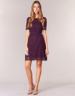 Clothing Women Short Dresses Morgan ROUJEL Bordeaux