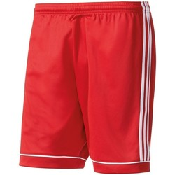 Clothing Women Shorts / Bermudas adidas Originals Short Squadra 17 Kids