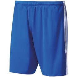 Clothing Women Shorts / Bermudas adidas Originals Shorts Tastigo 17 Kids