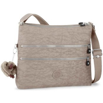 Bags Women Shoulder bags Kipling Alvar Ladies Crossbody Bag grey