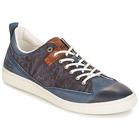 Shoes Men Low top trainers Kickers SANTA FE Blue