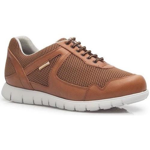 Shoes Men Low top trainers Calzamedi DEPORTIVO CUERO