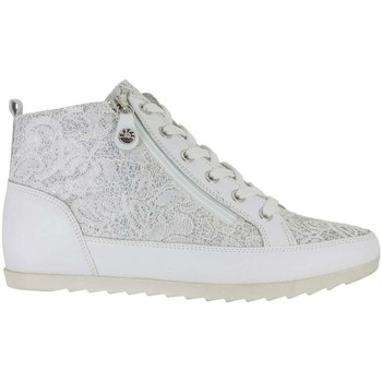 Shoes Women Hi top trainers Enval 7930 Sneakers Women White White