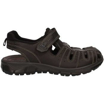 Shoes Men Sandals Igi&co 7732 Sandals Man Black Black