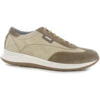 Shoes Men Derby Shoes Stonefly 108657 Sneakers Man Beige Beige
