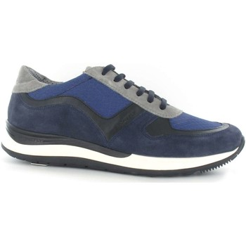 Shoes Men Low top trainers Stonefly 108656 Shoes with laces Man Blue Blue