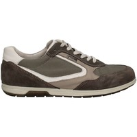 Shoes Men Low top trainers Igi&co 7690 Sneakers Man Grey Grey