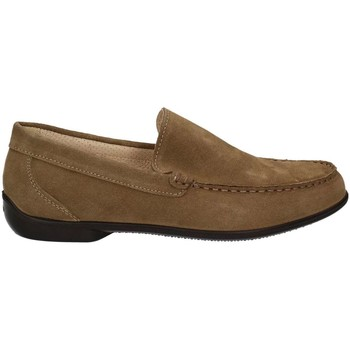 Shoes Men Loafers Igi&co 7701 Mocassins Man Turtledove Turtledove