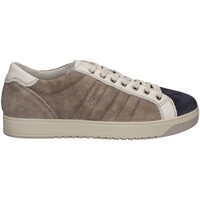 Shoes Men Low top trainers Igi&co 7725 Sneakers Man Grey Grey