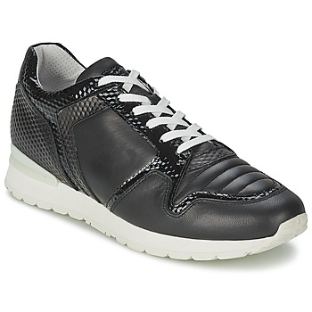 Shoes Women Low top trainers Bikkembergs KATE 420 Black