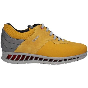 Shoes Men Low top trainers CallagHan 10401 Sneakers Man Yellow Yellow